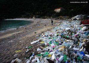 Plastic Bottles on Pupnatska Luka Beach