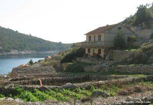 House Segedin Jende and it vineyards - Pavja Luka