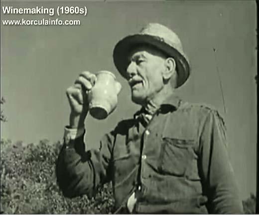 winemaking-korcula1960c