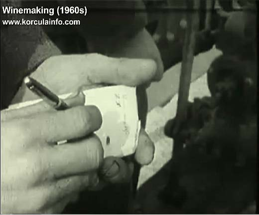 winemaking-korcula1960l