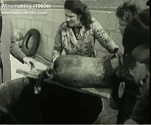 winemaking-korcula1960n