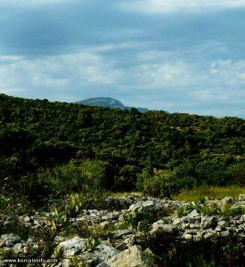 Sv.Ilija summit viewed from Defora, Korcula island