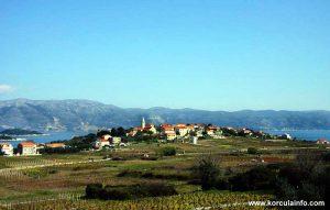 Wine Groves of Lumbarda @ Vela Glavica suburb