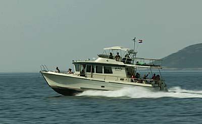 blaza-yacht1