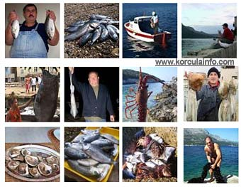 fishing-korcula-photos1