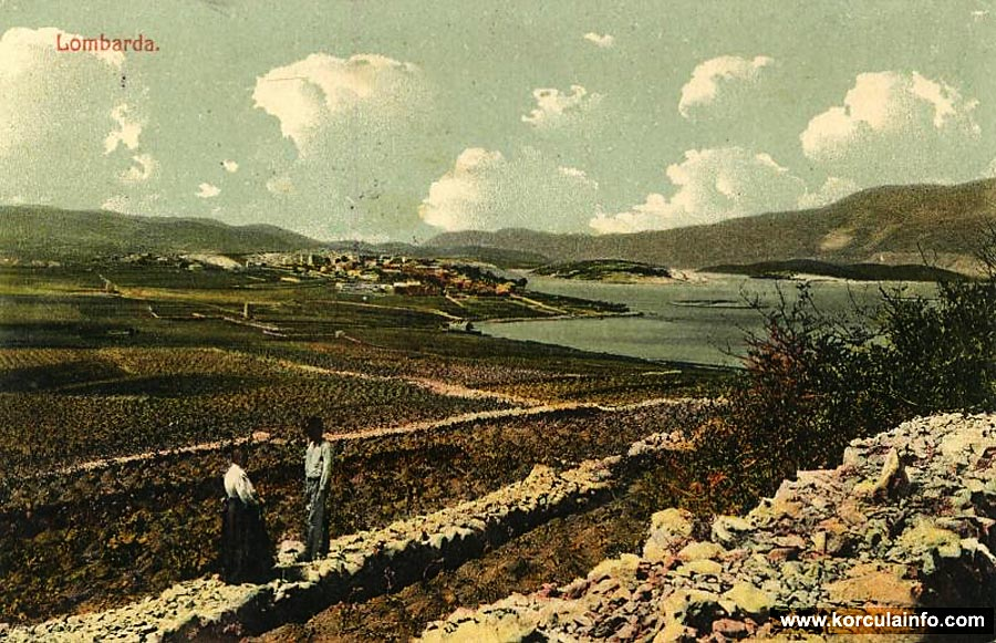Vineyards of Lumbarda in 1917