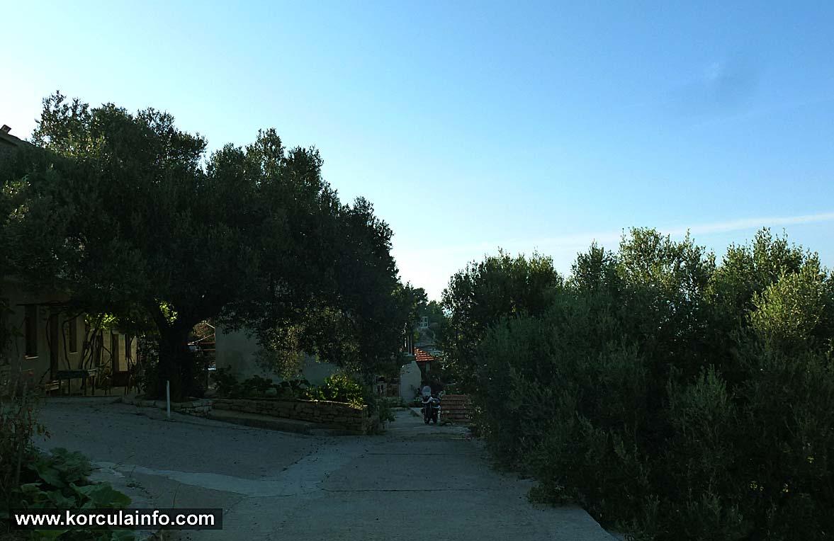 Path to the Babina bay