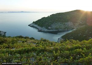 Views from Zaglav over Pavja Luka bay and Lastovo