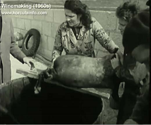 winemaking-korcula1960n