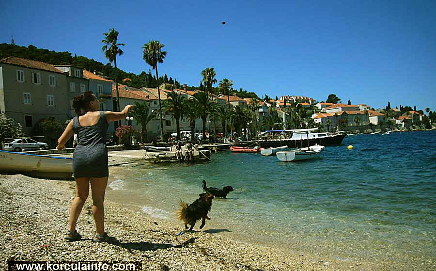 dog-friendly-beach-korcula1
