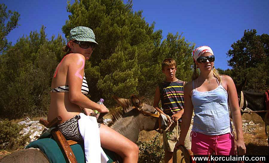 donkey-safari-korcula1