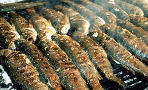 grilled-fish-pecena-riba1