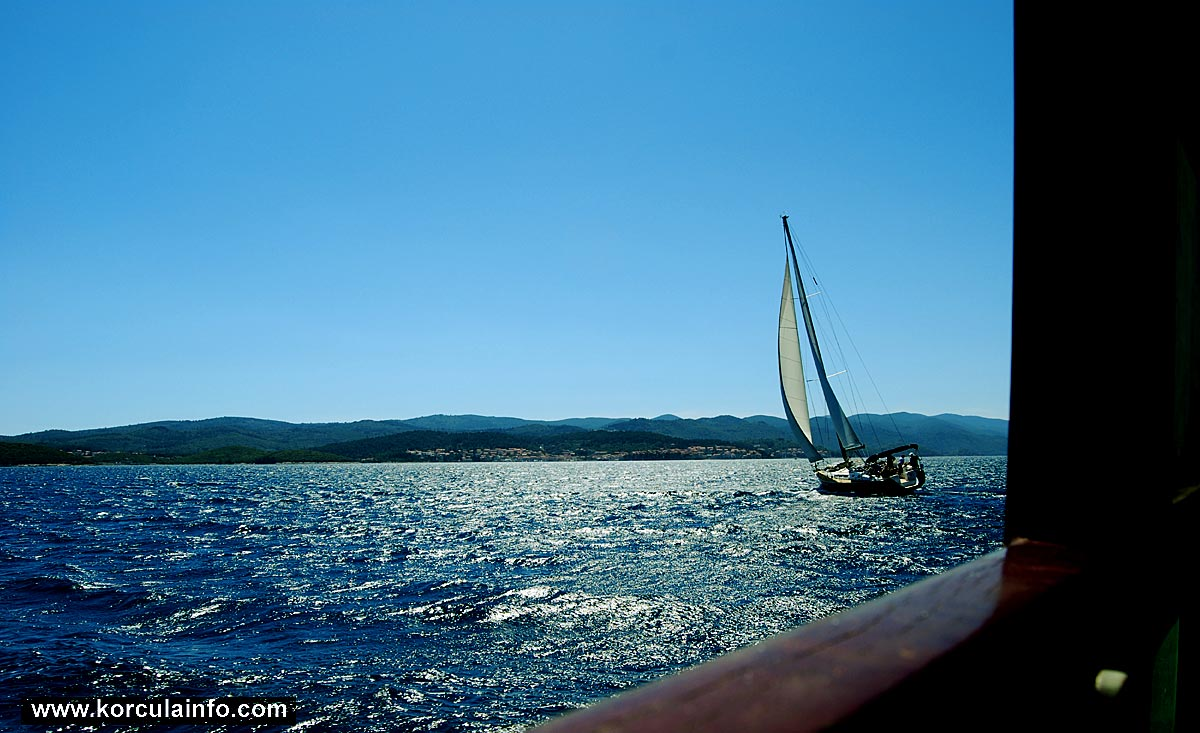 Maestral wind & Sailing in the channel