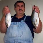 Fish Feluni