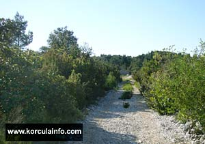 cycling-korcula-tarmac-road1