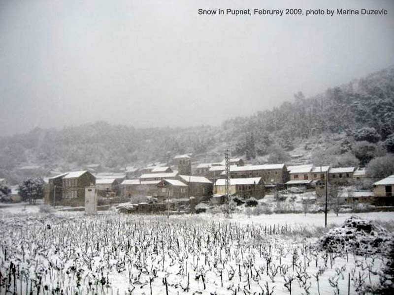 Snow in Pupnat, Korcula Island (2009)