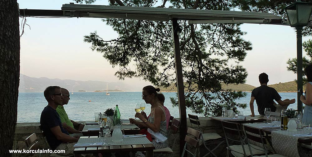 Wine tasting with views