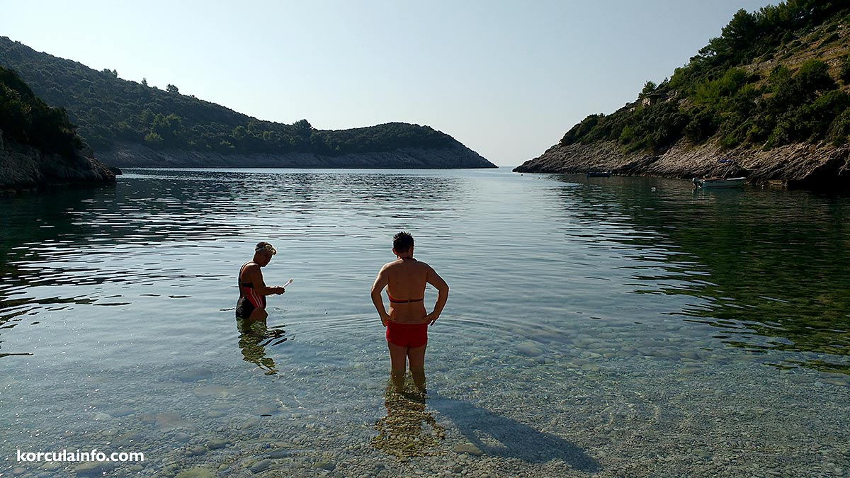 Early morning swim on the secluded beach of Korcula island
